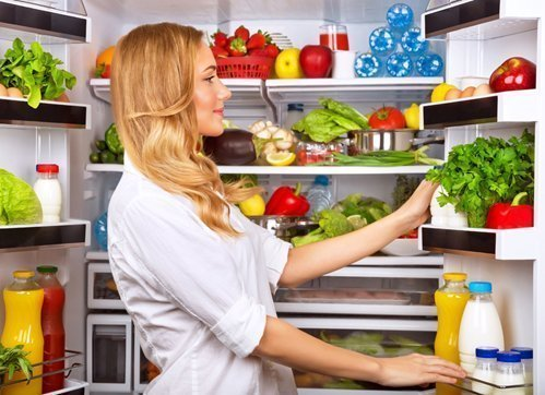 Мини-холодильники какой лучше выбрать  обзор лучших моделей и брендов