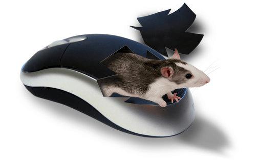 Какая мышь лучше - лазерная или оптическая