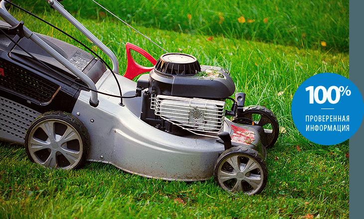 Грамотный выбор газонокосилки
